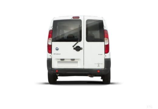 FIAT Doblo II kombi biały tylny