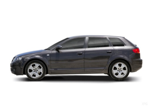 AUDI A3 Sportback I hatchback boczny lewy