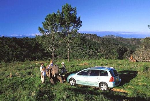 PEUGEOT 307 SW I kombi zielony jasny tylny lewy