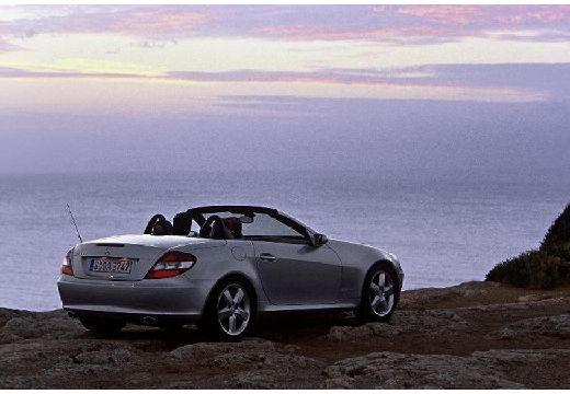 MERCEDES-BENZ Klasa SLK SLK R 171 I roadster silver grey tylny prawy
