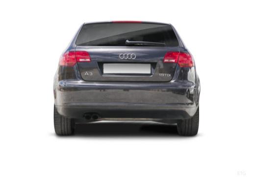 AUDI A3 Sportback I hatchback tylny